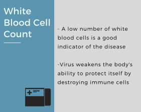 White-Blood-Cell-Count2